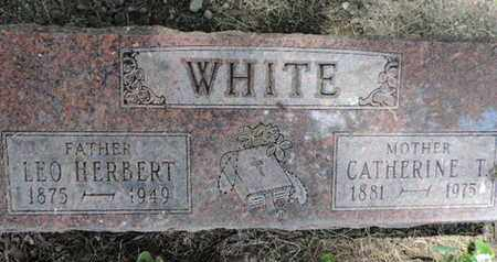 WHITE, LEO HERBERT - Franklin County, Ohio | LEO HERBERT WHITE - Ohio Gravestone Photos
