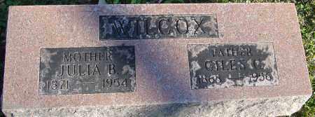 WILCOX, GILES C - Franklin County, Ohio | GILES C WILCOX - Ohio Gravestone Photos