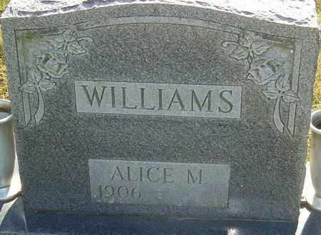 WILLIAMS, ALICE MAE - Franklin County, Ohio | ALICE MAE WILLIAMS - Ohio Gravestone Photos