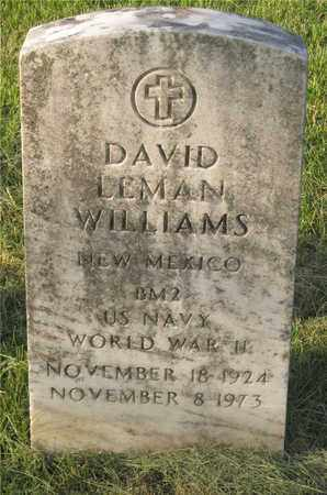 WILLIAMS, DAVID LEHMAN - Franklin County, Ohio | DAVID LEHMAN WILLIAMS - Ohio Gravestone Photos