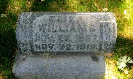 WILLIAMS, ELIZA - Franklin County, Ohio | ELIZA WILLIAMS - Ohio Gravestone Photos
