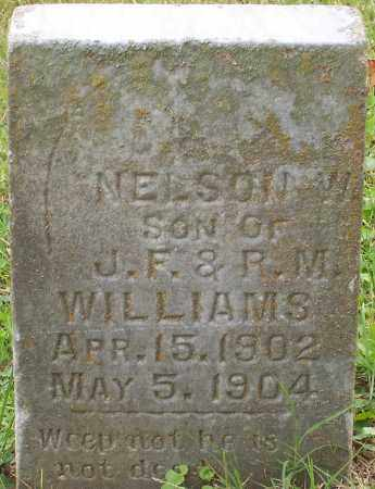 WILLIAMS, NELSON W. - Franklin County, Ohio | NELSON W. WILLIAMS - Ohio Gravestone Photos