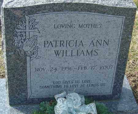WILLIAMS, PATRICIA ANN - Franklin County, Ohio | PATRICIA ANN WILLIAMS - Ohio Gravestone Photos