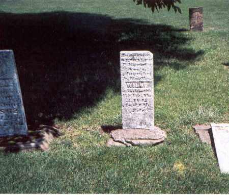 WILLIE, WILLIAM - Franklin County, Ohio   WILLIAM WILLIE - Ohio Gravestone Photos