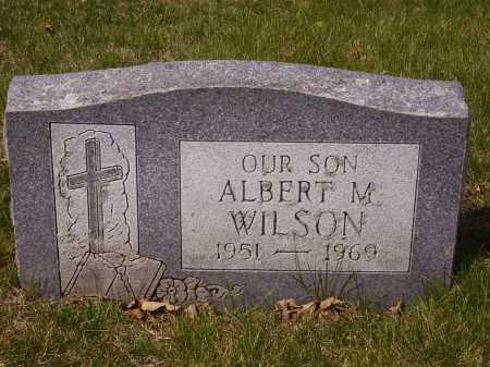 WILSON, ALBERT M. - Franklin County, Ohio | ALBERT M. WILSON - Ohio Gravestone Photos