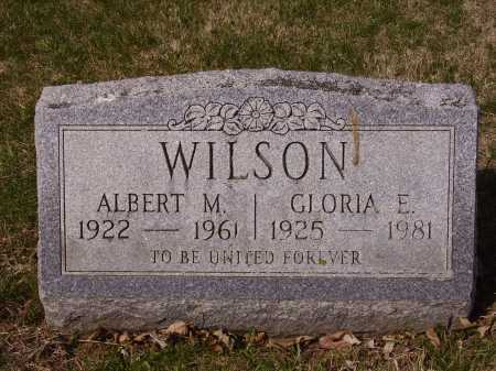 WILSON, GLORIA E. - Franklin County, Ohio | GLORIA E. WILSON - Ohio Gravestone Photos