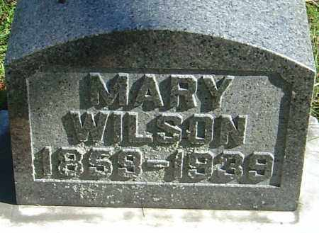 WILSON, MARY - Franklin County, Ohio | MARY WILSON - Ohio Gravestone Photos