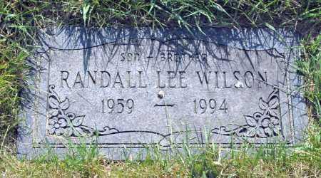 WILSON, RANDALL - Franklin County, Ohio | RANDALL WILSON - Ohio Gravestone Photos