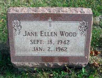 WOOD, JANE ELLEN - Franklin County, Ohio | JANE ELLEN WOOD - Ohio Gravestone Photos