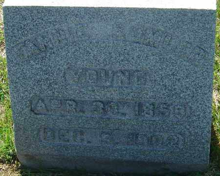 YOUNG, FANNIE - Franklin County, Ohio | FANNIE YOUNG - Ohio Gravestone Photos