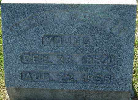 YOUNG, HARRY EMMETT - Franklin County, Ohio | HARRY EMMETT YOUNG - Ohio Gravestone Photos