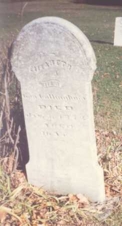 COTTINGHAM, ELIZABETH - Fulton County, Ohio | ELIZABETH COTTINGHAM - Ohio Gravestone Photos