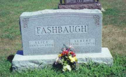 FEEBACK FASHBAUGH, ALICE - Fulton County, Ohio | ALICE FEEBACK FASHBAUGH - Ohio Gravestone Photos