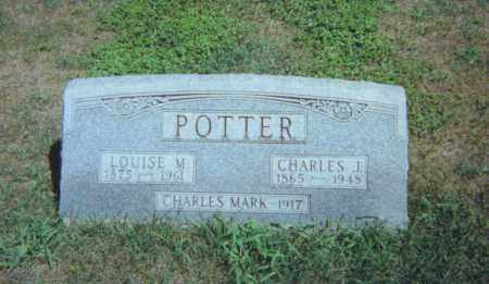 POTTER, LOUISE M. - Fulton County, Ohio | LOUISE M. POTTER - Ohio Gravestone Photos