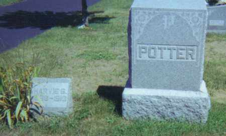 POTTER, HARVIE GORDON - Fulton County, Ohio | HARVIE GORDON POTTER - Ohio Gravestone Photos