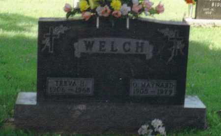 WELCH, TREVA HELEN - Fulton County, Ohio | TREVA HELEN WELCH - Ohio Gravestone Photos