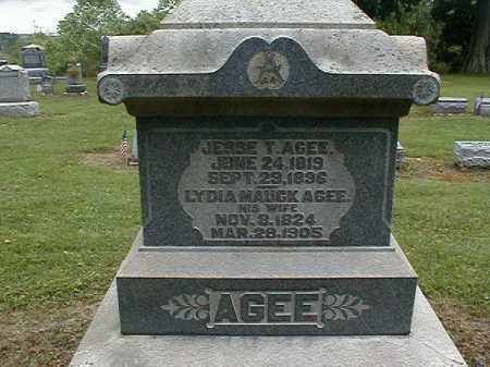 AGEE, LYDIA - Gallia County, Ohio | LYDIA AGEE - Ohio Gravestone Photos