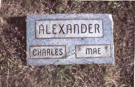 ALEXANDER, CHARLES - Gallia County, Ohio | CHARLES ALEXANDER - Ohio Gravestone Photos