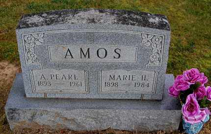 AMOS, A PEARL - Gallia County, Ohio | A PEARL AMOS - Ohio Gravestone Photos