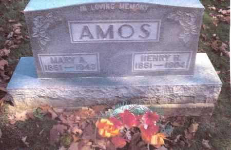 AMOS, MARY - Gallia County, Ohio | MARY AMOS - Ohio Gravestone Photos