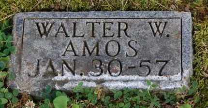 AMOS, WALTER W - Gallia County, Ohio | WALTER W AMOS - Ohio Gravestone Photos