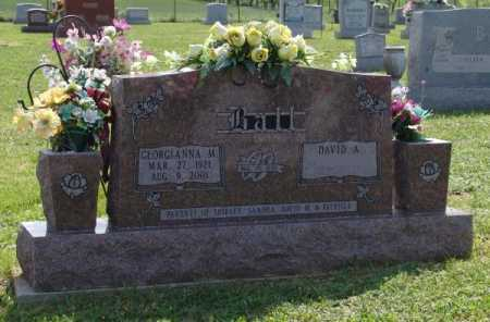 BALL, GEORGIANNA M - Gallia County, Ohio | GEORGIANNA M BALL - Ohio Gravestone Photos