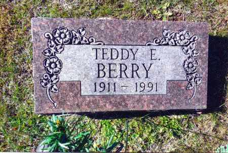 BERRY, TEDDY E. - Gallia County, Ohio | TEDDY E. BERRY - Ohio Gravestone Photos