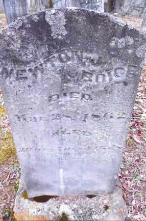 BOICE, NEWTON - Gallia County, Ohio | NEWTON BOICE - Ohio Gravestone Photos