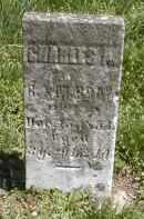 BRAY, CHARLES A. - Gallia County, Ohio | CHARLES A. BRAY - Ohio Gravestone Photos