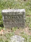 BRAY, MARTHA L. - Gallia County, Ohio | MARTHA L. BRAY - Ohio Gravestone Photos