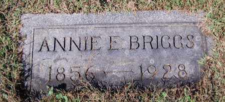 BRIGGS, ANNIE E - Gallia County, Ohio | ANNIE E BRIGGS - Ohio Gravestone Photos