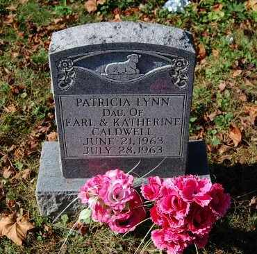 CALDWELL, PATRICIA LYNN - Gallia County, Ohio | PATRICIA LYNN CALDWELL - Ohio Gravestone Photos