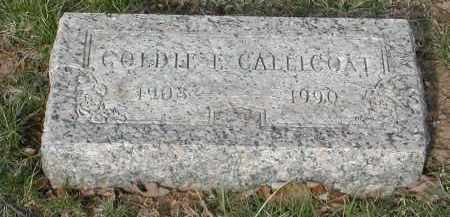 CALLICOAT, GOLDIE - Gallia County, Ohio | GOLDIE CALLICOAT - Ohio Gravestone Photos