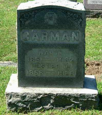 CARMAN, DAVID - Gallia County, Ohio | DAVID CARMAN - Ohio Gravestone Photos