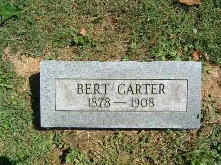 CARTER, BERT - Gallia County, Ohio | BERT CARTER - Ohio Gravestone Photos