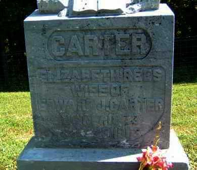 CARTER, ELIZABETH - Gallia County, Ohio | ELIZABETH CARTER - Ohio Gravestone Photos