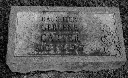 CARTER, GERLENE - Gallia County, Ohio | GERLENE CARTER - Ohio Gravestone Photos