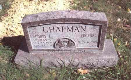 CHAPMAN, AUDREY L. - Gallia County, Ohio | AUDREY L. CHAPMAN - Ohio Gravestone Photos