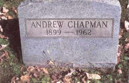 CHAPMAN, ANDREW - Gallia County, Ohio | ANDREW CHAPMAN - Ohio Gravestone Photos