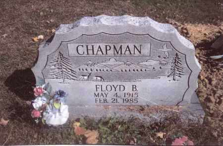 CHAPMAN, FLOYD B. - Gallia County, Ohio | FLOYD B. CHAPMAN - Ohio Gravestone Photos