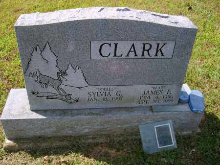 CLARK, JAMES - Gallia County, Ohio | JAMES CLARK - Ohio Gravestone Photos