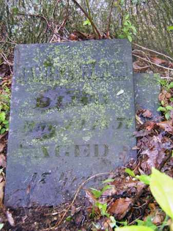 COFFMAN, JAMES - Gallia County, Ohio | JAMES COFFMAN - Ohio Gravestone Photos