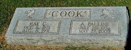 COOK, RAY C - Gallia County, Ohio | RAY C COOK - Ohio Gravestone Photos