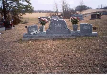 BOWLES, LUTHER - Gallia County, Ohio | LUTHER BOWLES - Ohio Gravestone Photos