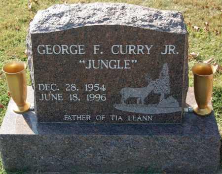 CURRY, GEORGE F JR - Gallia County, Ohio | GEORGE F JR CURRY - Ohio Gravestone Photos