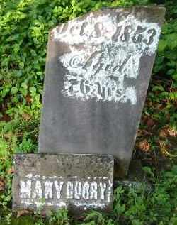 CURRY, MARY - Gallia County, Ohio | MARY CURRY - Ohio Gravestone Photos