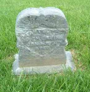 DAVIS, INFANT SON - Gallia County, Ohio | INFANT SON DAVIS - Ohio Gravestone Photos