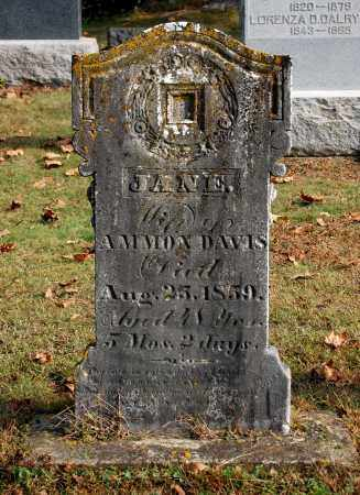 DAVIS, JANE - Gallia County, Ohio | JANE DAVIS - Ohio Gravestone Photos