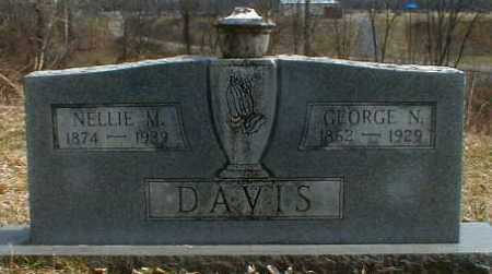 DAVIS, NELLIE - Gallia County, Ohio | NELLIE DAVIS - Ohio Gravestone Photos