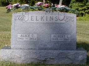 ELKINS, ALBERT - Gallia County, Ohio | ALBERT ELKINS - Ohio Gravestone Photos